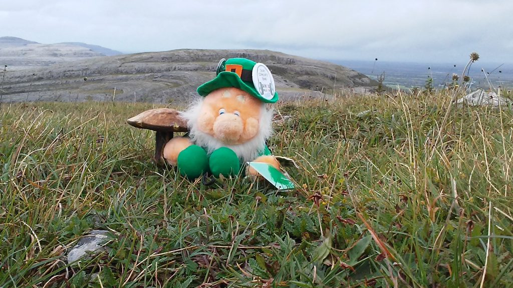 At the top of the mountain at The Burren, County Clair.